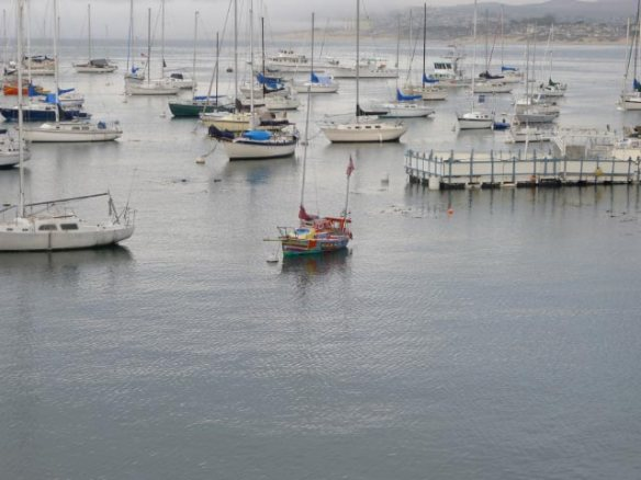 """More """"color"""" in Monterey Harbor. I don't know what the rectangular platform is for"""