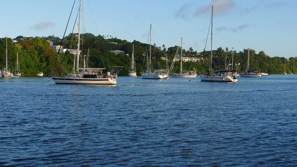 View across part of the anchorage. Mooring bouys have been placed and help to protect the living coral below.