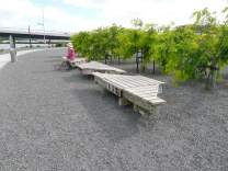 Seating that evokes the maritime industry of Whangarei - sections of docks.