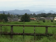 Pretty view, and typical of Northland. Whangarei Heads in the far distance.